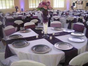 Eggplant Chair Cover Sashes