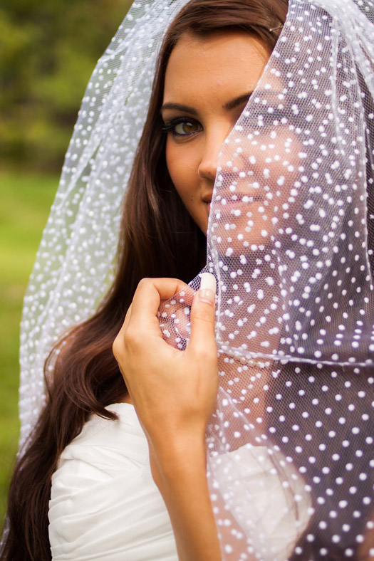 polka dot wedding veils