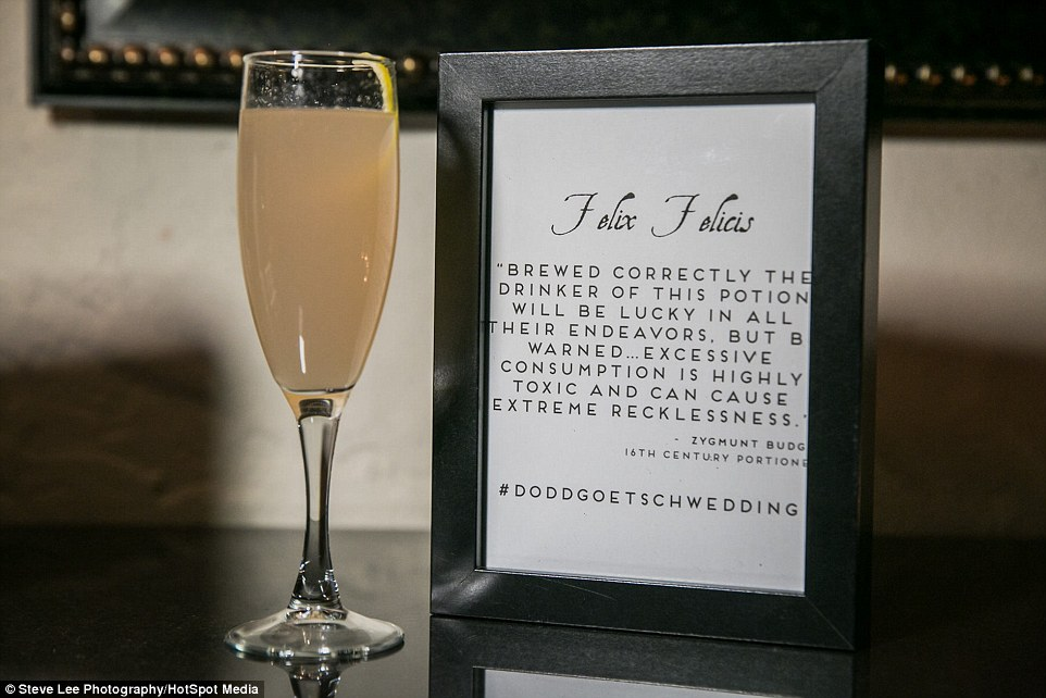 http://www.dailymail.co.uk/femail/article-3584516/Couple-tie-knot-enchanting-extravagant-65-000-Harry-Potter-themed-wedding.html