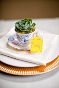 Succulent, Cactus, Nature, Wedding, Charger