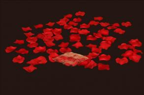 Silk Rose Petals 100pcs