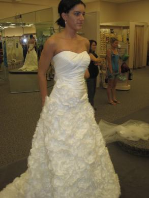 Davids bridal taffeta galina signature ball gown size 2 davids bridal taffeta galina signature ball gown junglespirit Image collections