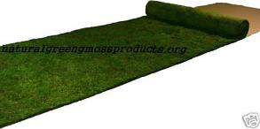 2'x20' Real Moss Runner rustic display arches chic shabby setting table display church ceremony centerpieces outdoor