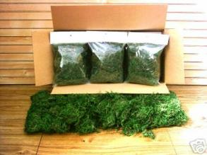 24 Bagged Loose Green dyed moss preserved floral centerpieces decorations runner table settings pew church ceremony