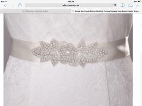 Beautiful Rhinestone Sash / Belt