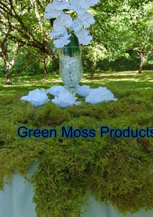 7 Pounds Bulk Sheet Moss (25-30 Sq. Ft.) Floral Wedding Arrangments Moss Wreath Bales Woodland Wedding Backdrop Floral Supplies Kokedama