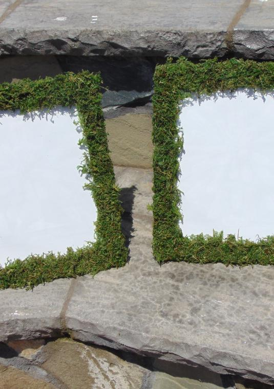 4 - 8 inches tall by 10 inches wide Moss Covered Frames wedding table numbers frame french country Shabby Chic Rustic wedding picture frame place setting moss frames