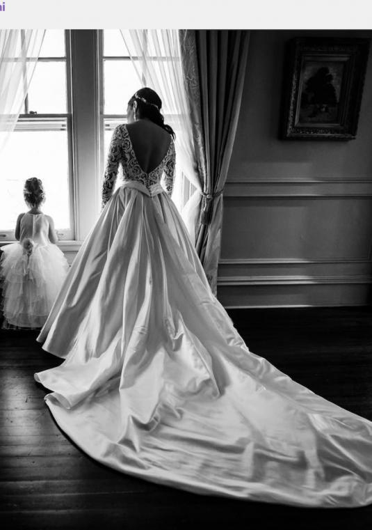 Pnina Tornai Gown & Veil  - New price