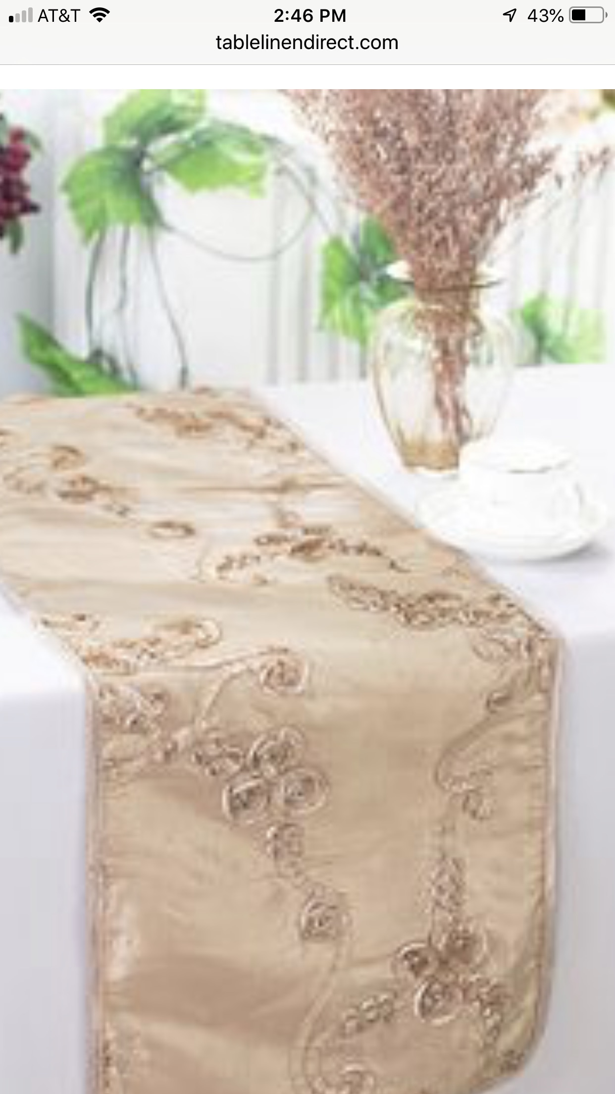 Champagne Ribbon Tafetta Table Runners