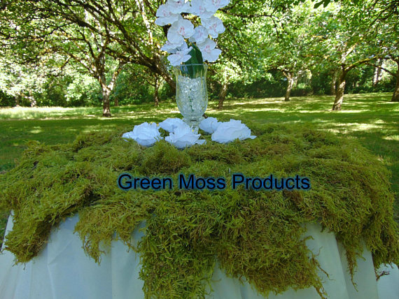 Bulk Sheet Moss 12-14 Sq. Ft. Fresh Sheet Moss Carpet Moss Real Moss Green Sheet Moss Live Sheet Moss Dry Sheet Moss Beautiful Green Moss