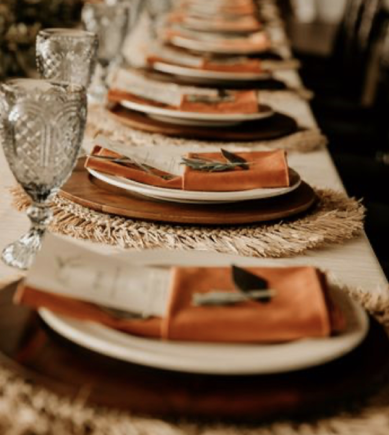 Burnt Orange Velvet Napkins