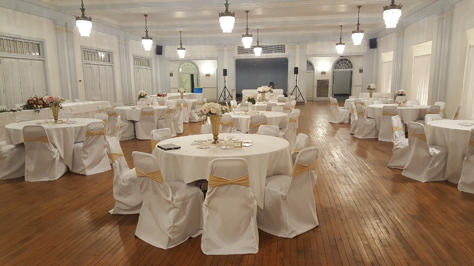 Banquet Chair Covers (130)