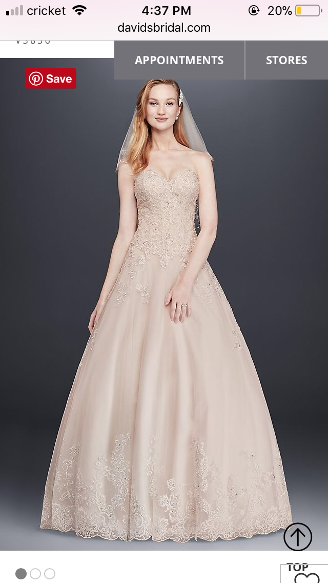 David's Bridal - Vintage Rose Colored Gown