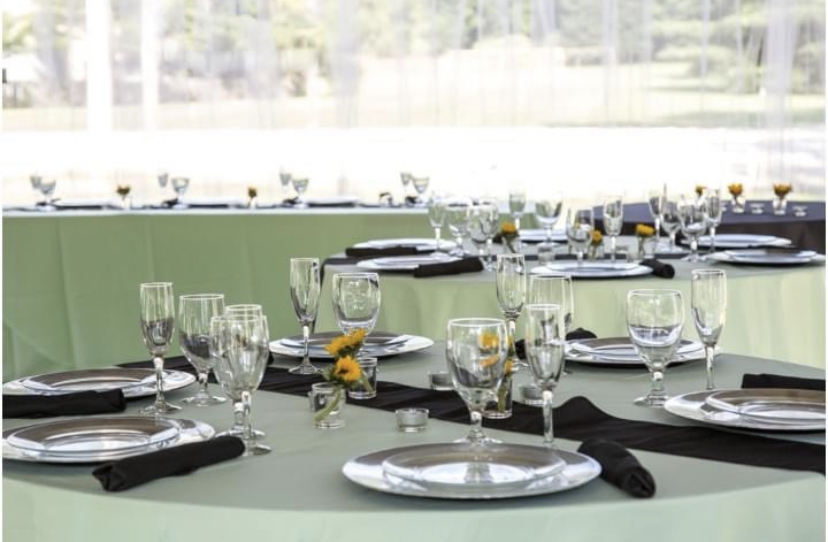 19 Mint Green Polyester Tablecloths