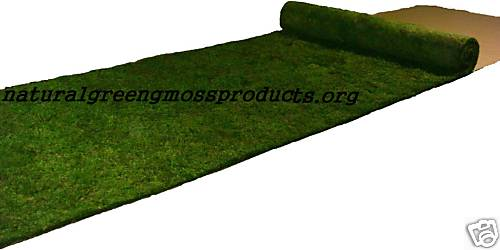 3'x20' Sheet Moss Runner Wedding Ceremony Reception Valentine Gift Ring Arch Fairy Green Table Centerpieces Chuppah Canopy