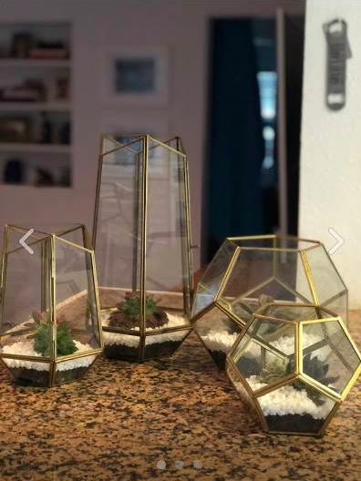 Geo Glass Terrariums