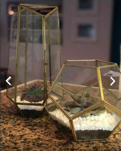 Tall Brass Glass Terrariums