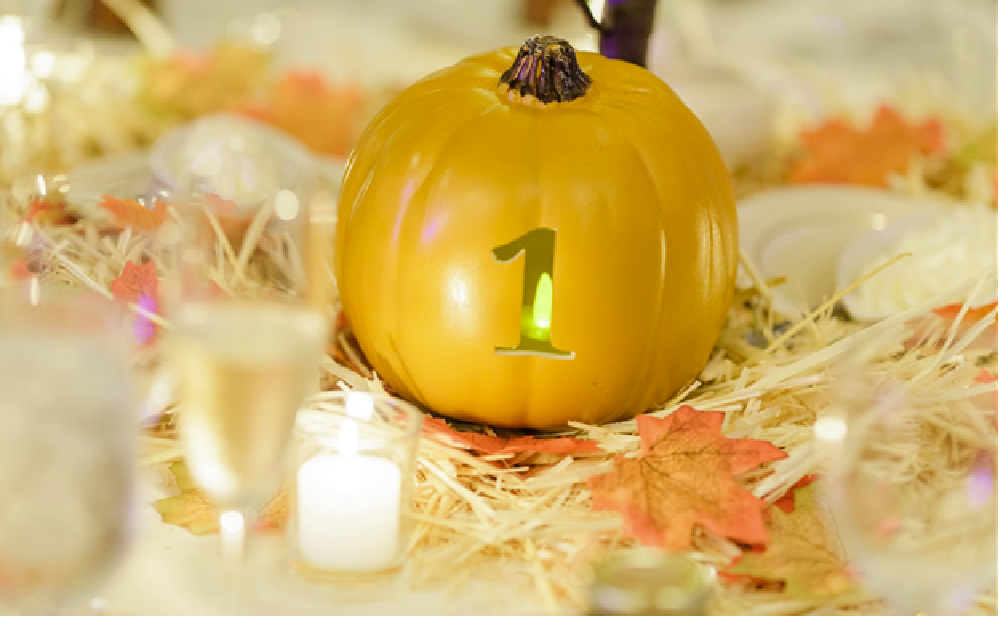 Pumpkin Table Numbers (carved)